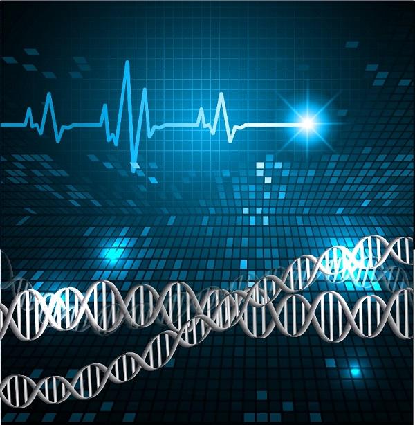 processamento de sinais e imagens biomédicos