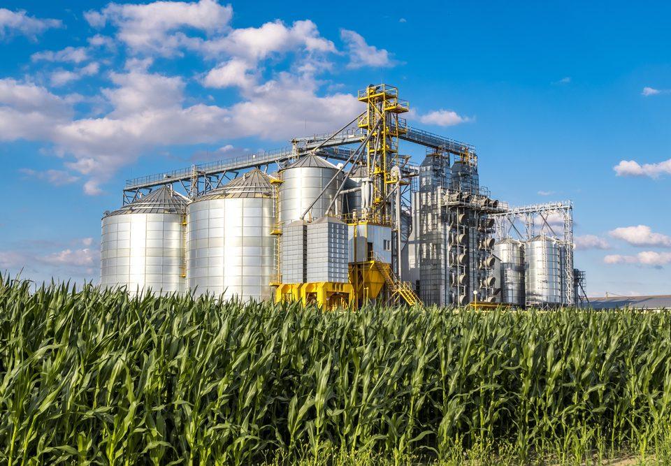 reducao-de-custos-na-agroindustria